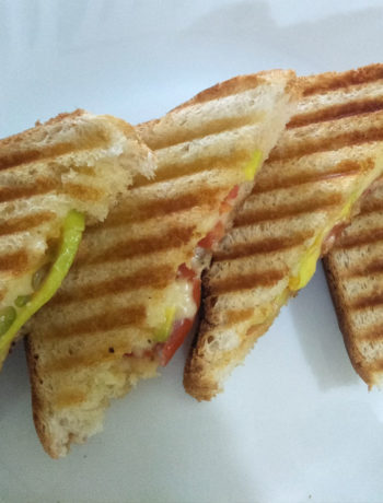 Avocado Cheese Tomato Sandwich Grilled